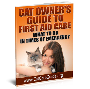 Cat Owners Guide